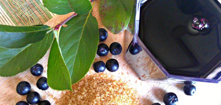 SOK od ARONIJE – hrana i lek